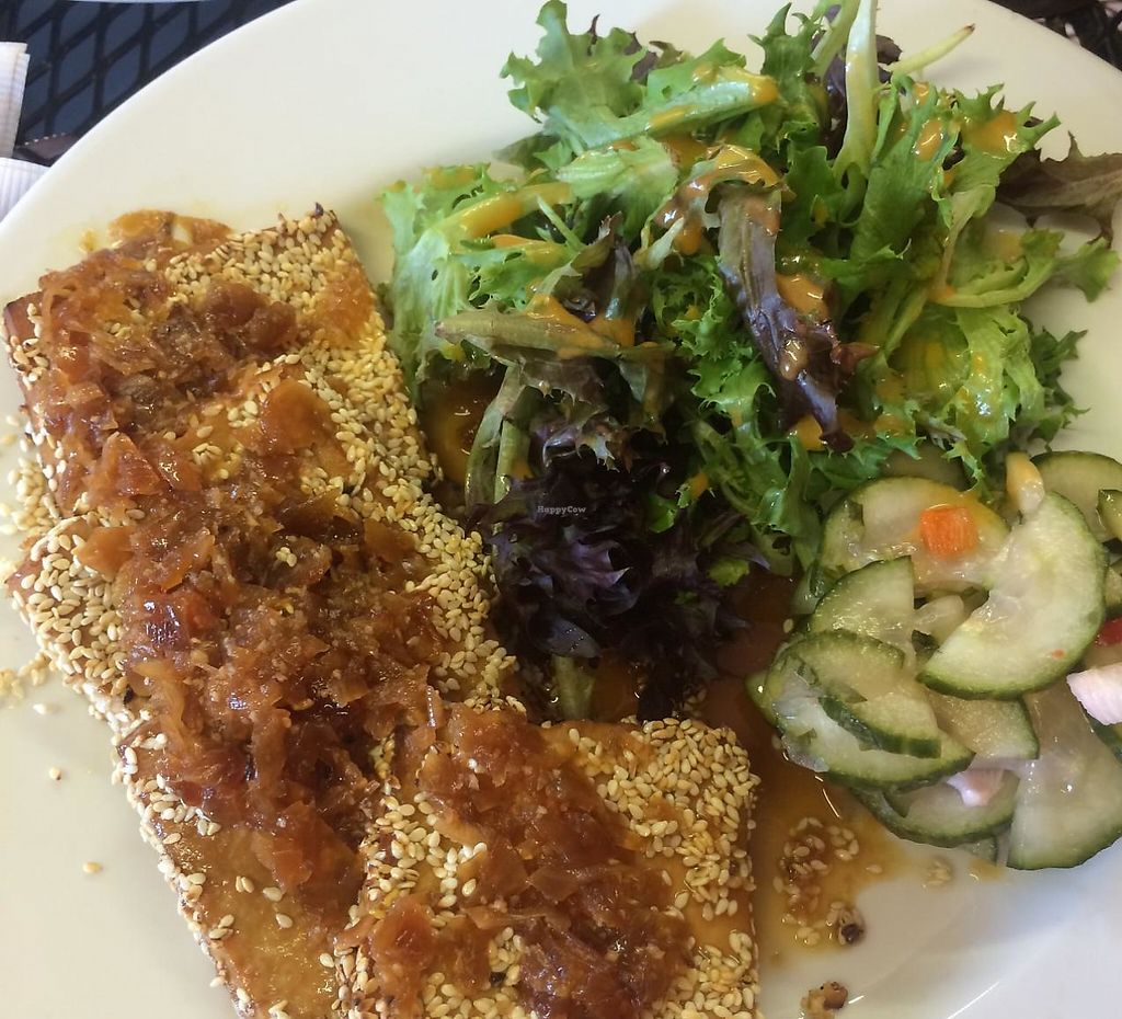 """Photo of Whiptail Grill  by <a href=""""/members/profile/Meggie%20and%20Ben"""">Meggie and Ben</a> <br/>Sesame encrusted tofu with orange, ginger, and soy glaze <br/> September 27, 2014  - <a href='/contact/abuse/image/38056/231486'>Report</a>"""