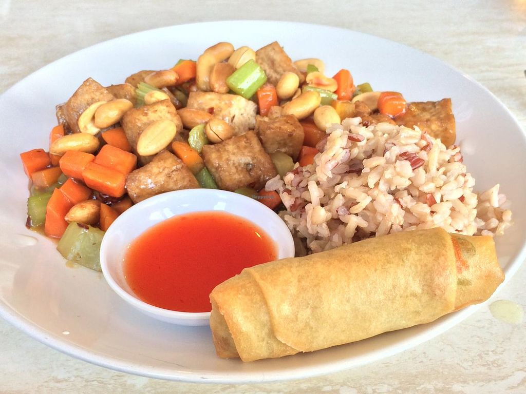 """Photo of Pepper Tree Veggie Cuisine  by <a href=""""/members/profile/AustinJardinera"""">AustinJardinera</a> <br/>Kung Pao Tofu <br/> March 4, 2015  - <a href='/contact/abuse/image/3806/94902'>Report</a>"""