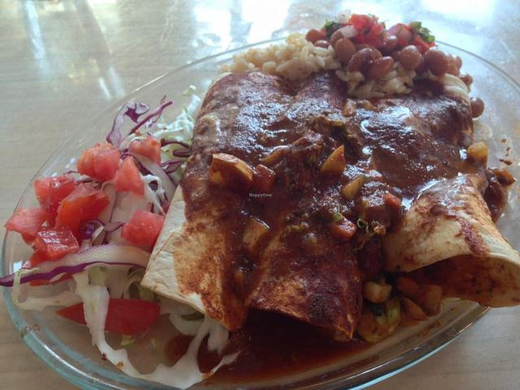 """Photo of CLOSED: FRESH Taqueria  by <a href=""""/members/profile/happycowgirl"""">happycowgirl</a> <br/>vegan enchiladas <br/> June 2, 2014  - <a href='/contact/abuse/image/38070/71262'>Report</a>"""