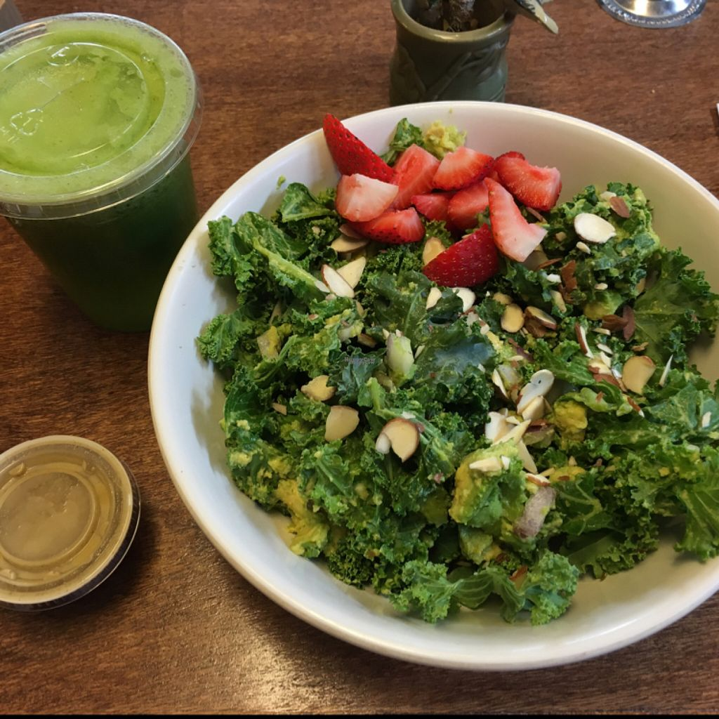 "Photo of Coco Greens  by <a href=""/members/profile/kaurorah"">kaurorah</a> <br/>kale and avo salad with greenie juice <br/> August 13, 2016  - <a href='/contact/abuse/image/38087/168335'>Report</a>"