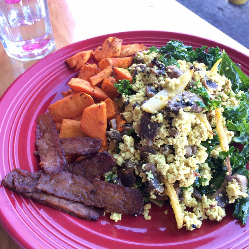 "Photo of The Grain Cafe  by <a href=""/members/profile/Sweganic"">Sweganic</a> <br/>Tofu Scramble w. Tempeh Bacon <br/> February 16, 2015  - <a href='/contact/abuse/image/38090/93311'>Report</a>"