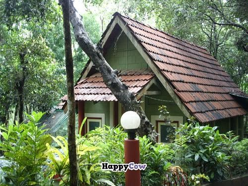 """Photo of Ayurveda Sanctuary  by <a href=""""/members/profile/shaarikumar"""">shaarikumar</a> <br/>This is one of the cottages at the Ayurveda Sanctuary, closest to the dining centre <br/> July 18, 2013  - <a href='/contact/abuse/image/38138/51425'>Report</a>"""
