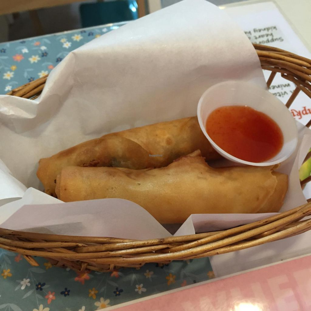 "Photo of CLOSED: Veggie Cottage  by <a href=""/members/profile/natalierowee"">natalierowee</a> <br/>spring rolls <br/> March 20, 2015  - <a href='/contact/abuse/image/38139/96275'>Report</a>"