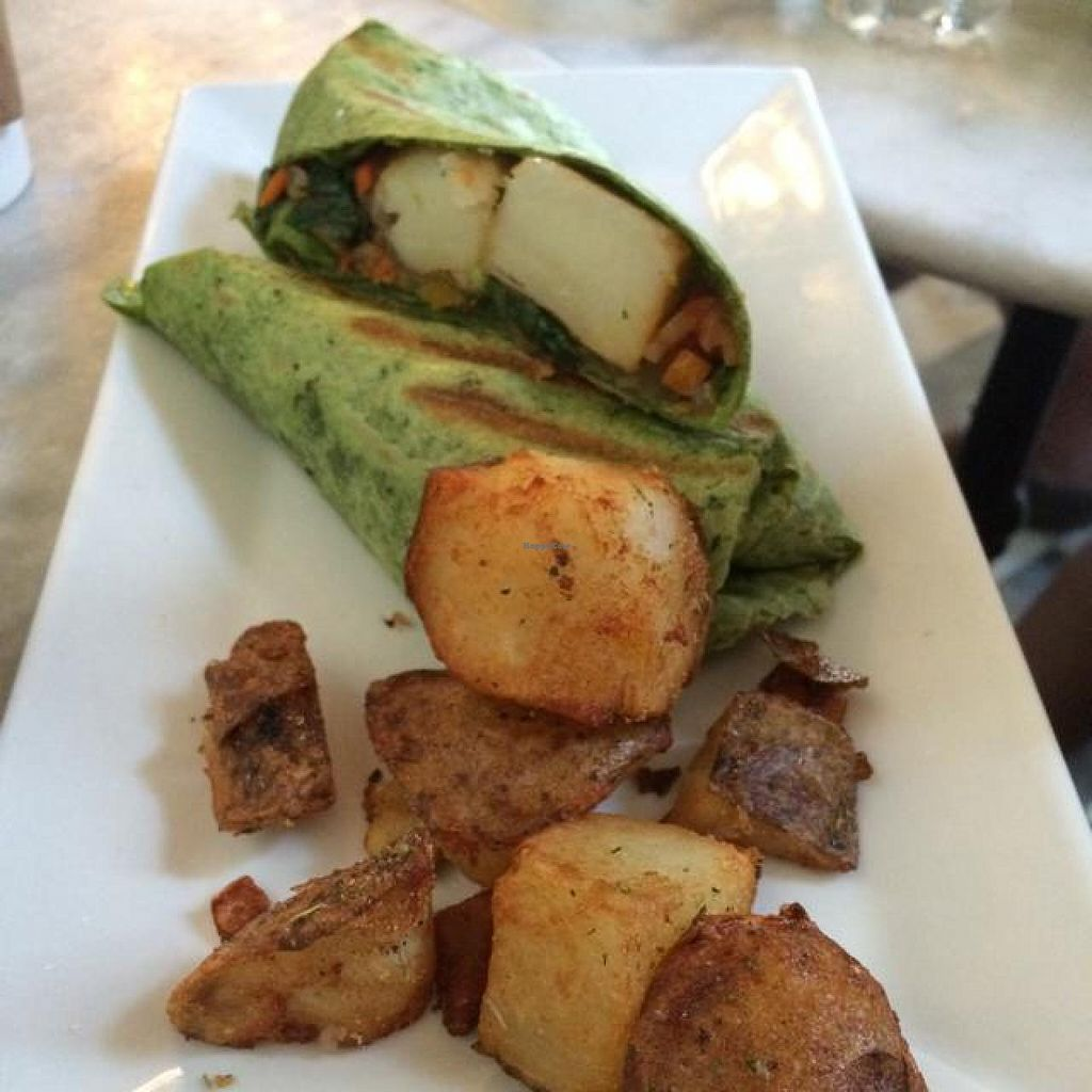 """Photo of CLOSED: Cafe Cultura  by <a href=""""/members/profile/kmilitello"""">kmilitello</a> <br/>veggie wrap with potatoes substituted for egg <br/> May 9, 2014  - <a href='/contact/abuse/image/38293/69687'>Report</a>"""