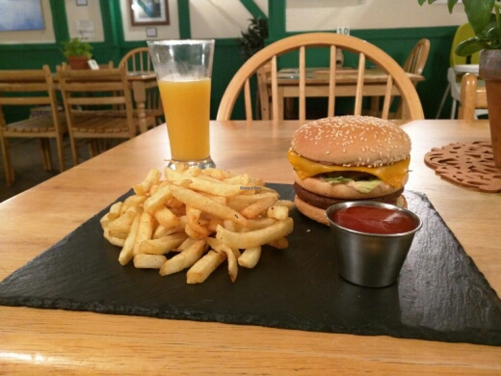 """Photo of Samphire Brasserie  by <a href=""""/members/profile/aidanrooney95"""">aidanrooney95</a> <br/>Big Moc & Apple and Mango juice <br/> January 29, 2016  - <a href='/contact/abuse/image/38330/134118'>Report</a>"""