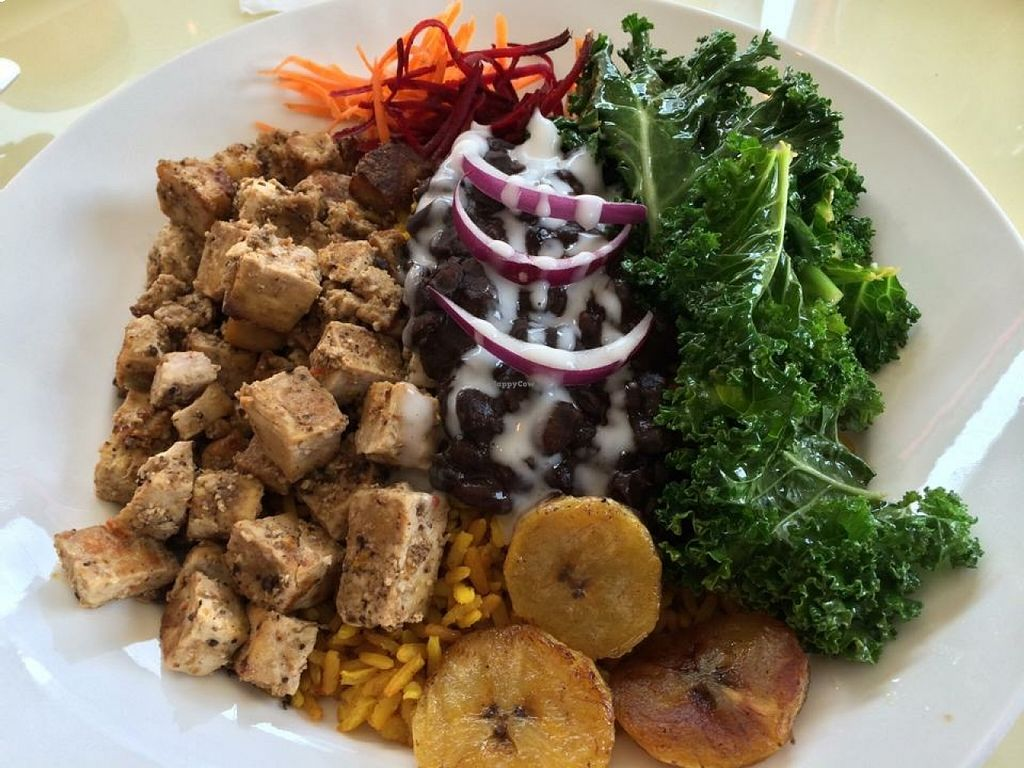 """Photo of Bread and Chocolate Vegan Bistro  by <a href=""""/members/profile/JaxGuy"""">JaxGuy</a> <br/>Island Bowl: jerk tofu with garlic greens, black beans & rice and plantains <br/> August 20, 2015  - <a href='/contact/abuse/image/38386/114392'>Report</a>"""