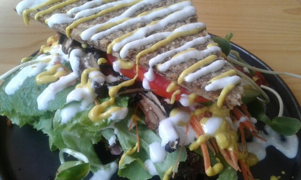 """Photo of Rasayana Raw Food Cafe  by <a href=""""/members/profile/VeganCrush"""">VeganCrush</a> <br/>Mushroom Sandwitch  <br/> June 19, 2016  - <a href='/contact/abuse/image/3847/154818'>Report</a>"""