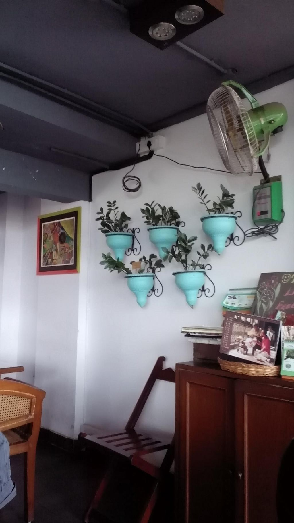 """Photo of Paradigm Shift Vegan Cafe  by <a href=""""/members/profile/Yilla"""">Yilla</a> <br/>décor <br/> March 31, 2015  - <a href='/contact/abuse/image/38782/97429'>Report</a>"""