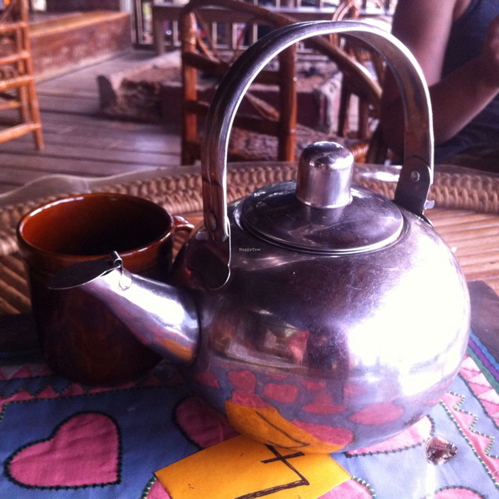 """Photo of Daauw Home  by <a href=""""/members/profile/Arvid"""">Arvid</a> <br/>Herbal teapot <br/> February 24, 2016  - <a href='/contact/abuse/image/38786/137566'>Report</a>"""