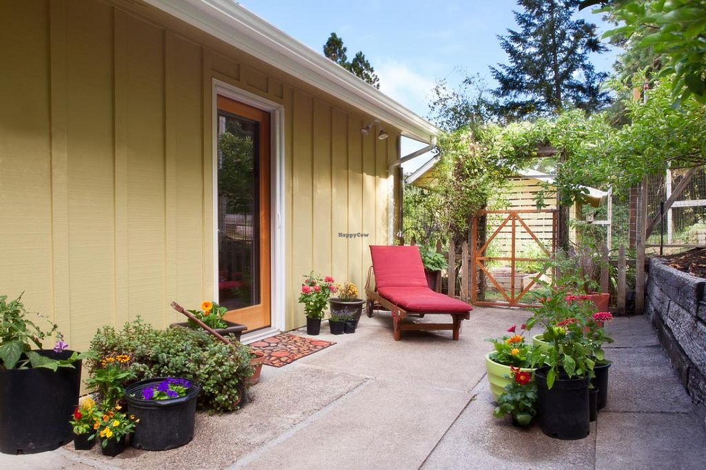 "Photo of Velo Bed and Breakfast  by <a href=""/members/profile/mishaenglish123"">mishaenglish123</a> <br/>Tandem Room's spacious private patio <br/> February 28, 2014  - <a href='/contact/abuse/image/38811/64954'>Report</a>"
