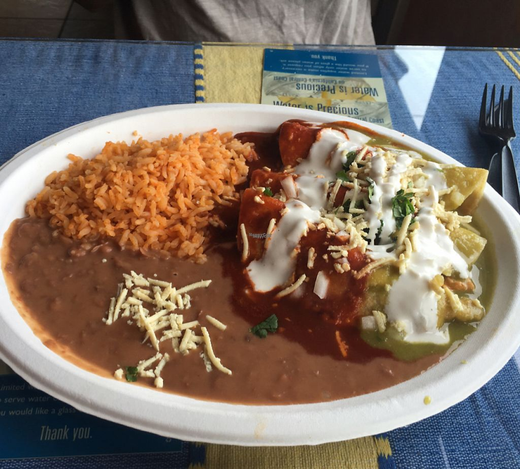 "Photo of El Cantaro Vegan Mexican Restaurant  by <a href=""/members/profile/Lures21"">Lures21</a> <br/>chickin enchiladas with red and green sauce   <br/> November 10, 2016  - <a href='/contact/abuse/image/38958/188202'>Report</a>"