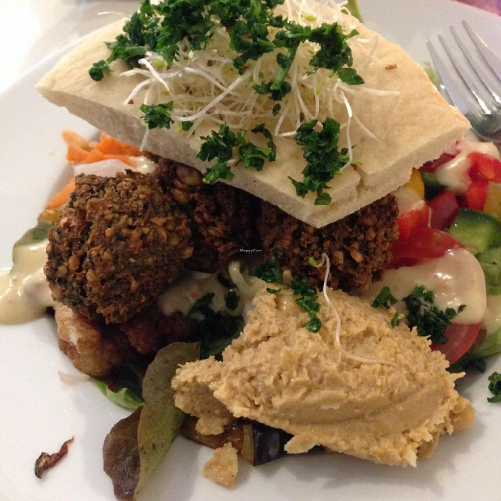 """Photo of Krawummel  by <a href=""""/members/profile/RobBohmer"""">RobBohmer</a> <br/>falafel <br/> December 20, 2014  - <a href='/contact/abuse/image/38998/88375'>Report</a>"""