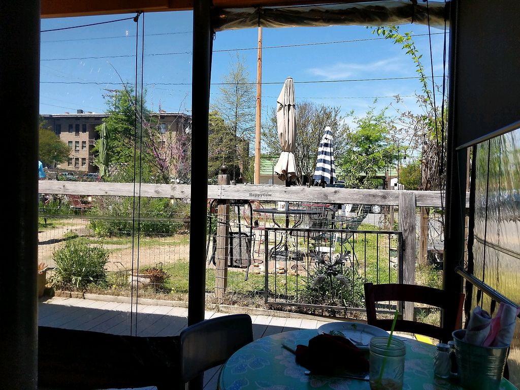 """Photo of The Root Cafe  by <a href=""""/members/profile/Toroco"""">Toroco</a> <br/>Outdoor seating at the Root Cafe.  <br/> April 20, 2018  - <a href='/contact/abuse/image/39087/388739'>Report</a>"""