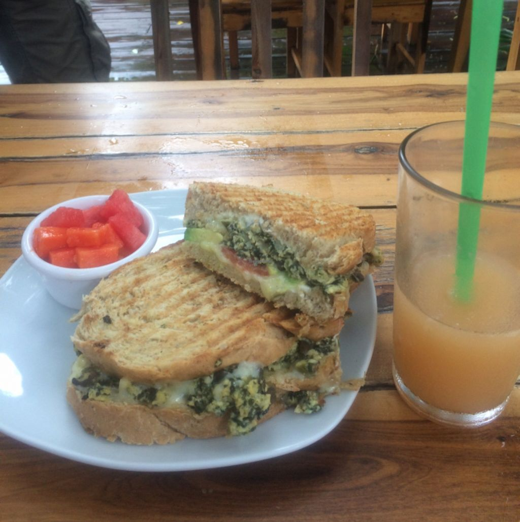 """Photo of Barlito Bakery and Cafe  by <a href=""""/members/profile/KSarah"""">KSarah</a> <br/>Kosher Sandwich <br/> October 15, 2015  - <a href='/contact/abuse/image/39109/121405'>Report</a>"""