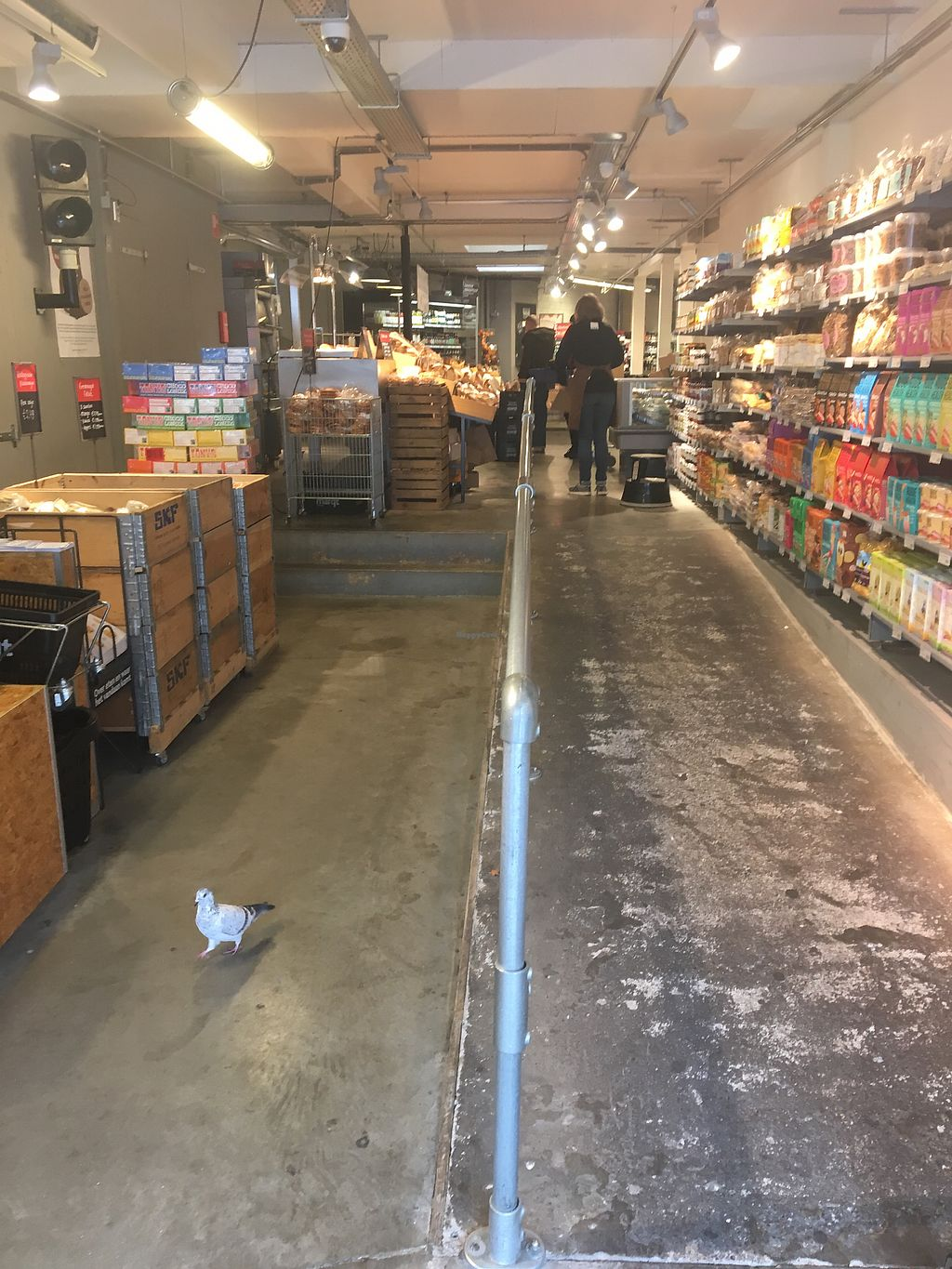"""Photo of Marqt Bergse Dorpsstraat  by <a href=""""/members/profile/Marianne1967"""">Marianne1967</a> <br/>Front entrance, pigeon was just leaving? <br/> March 24, 2018  - <a href='/contact/abuse/image/39134/375191'>Report</a>"""