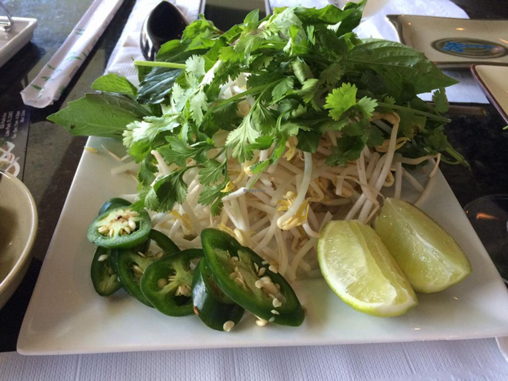 """Photo of Pho and Hot Pot  by <a href=""""/members/profile/kmilitello"""">kmilitello</a> <br/>pho garnish <br/> January 11, 2014  - <a href='/contact/abuse/image/39383/62287'>Report</a>"""