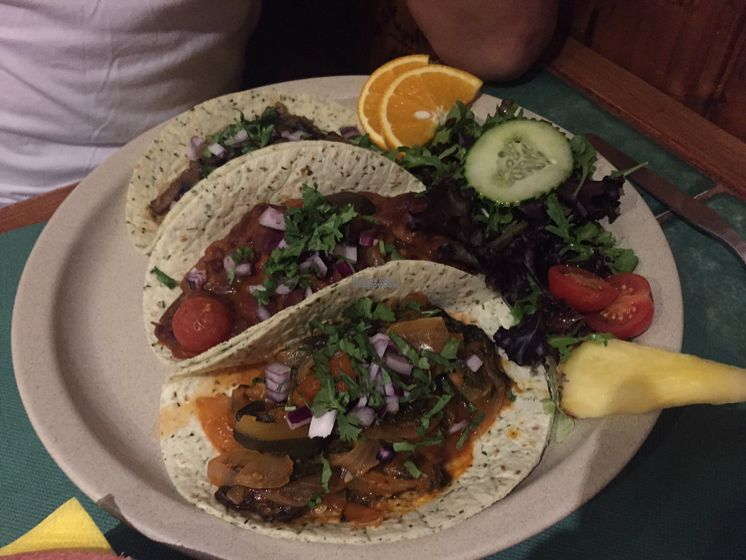 """Photo of Taco y Tequilla  by <a href=""""/members/profile/Frances23"""">Frances23</a> <br/>Vegetarian tex mex veganised <br/> September 5, 2016  - <a href='/contact/abuse/image/39636/173843'>Report</a>"""