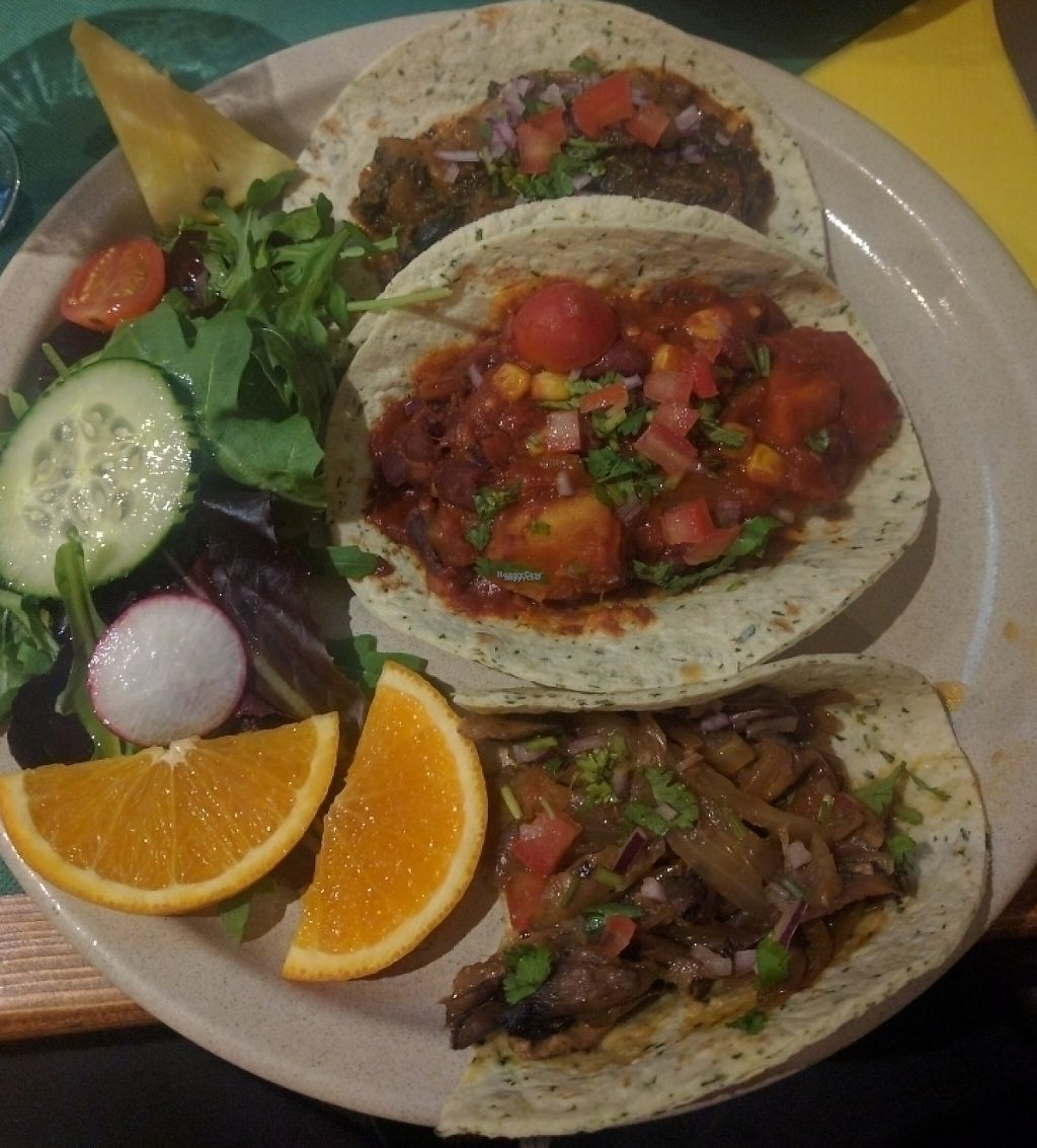 """Photo of Taco y Tequilla  by <a href=""""/members/profile/PaulPlatsch"""">PaulPlatsch</a> <br/>tacomix plate full vegan <br/> September 20, 2016  - <a href='/contact/abuse/image/39636/240929'>Report</a>"""