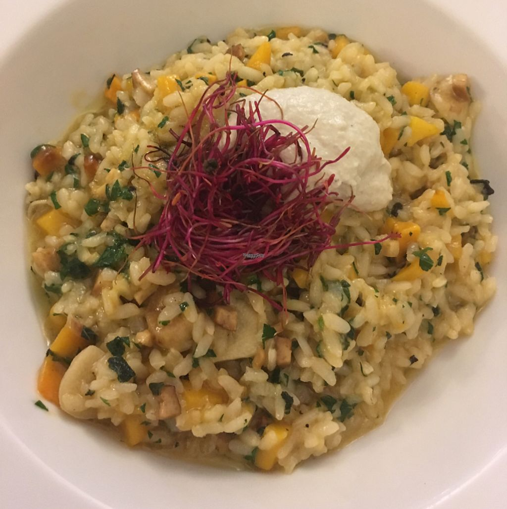 """Photo of Plevel  by <a href=""""/members/profile/RuthByrne"""">RuthByrne</a> <br/>risotto with cashew cheese  <br/> February 23, 2017  - <a href='/contact/abuse/image/39637/229705'>Report</a>"""