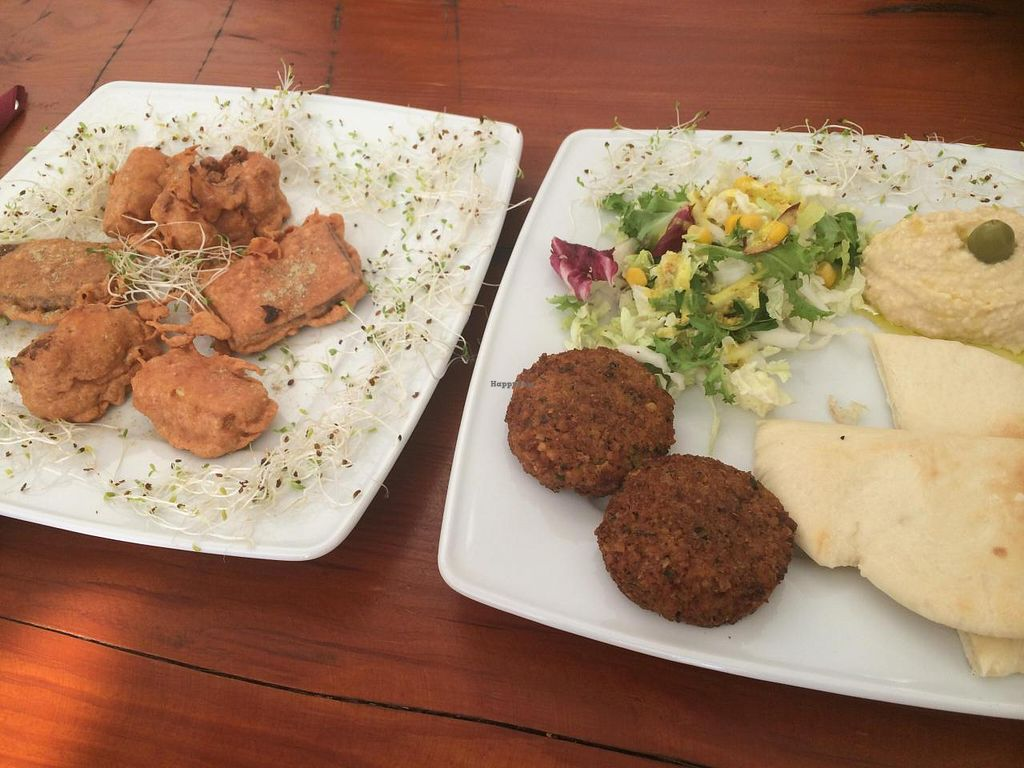 """Photo of CLOSED: Govinda  by <a href=""""/members/profile/JazzyCow"""">JazzyCow</a> <br/>Appetizers (falafel and pakora) <br/> August 10, 2014  - <a href='/contact/abuse/image/39707/76603'>Report</a>"""