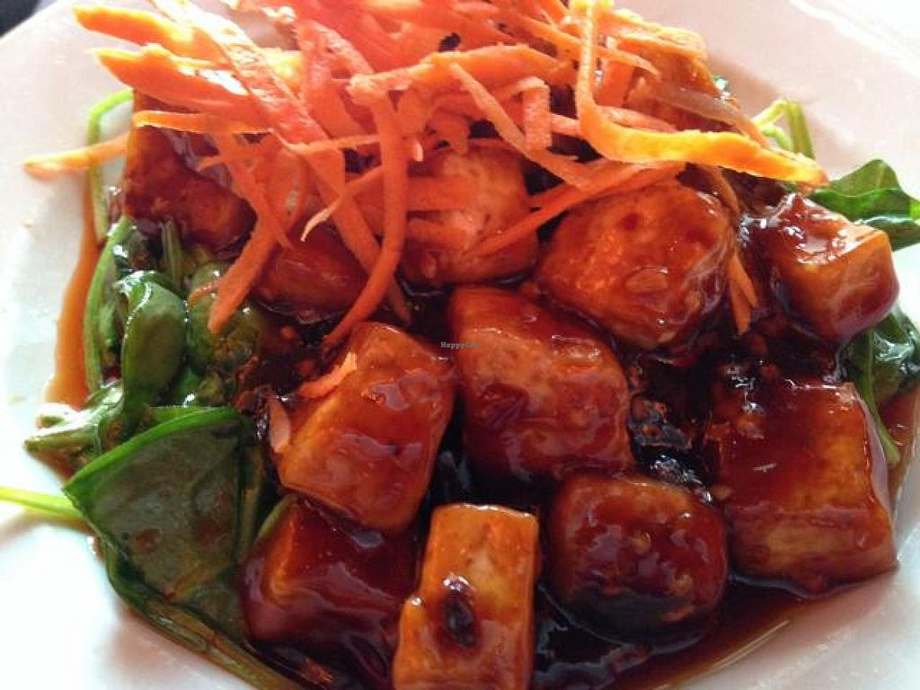 """Photo of Noodle  by <a href=""""/members/profile/calamaestra"""">calamaestra</a> <br/>spicy braised tofu <br/> May 8, 2014  - <a href='/contact/abuse/image/39750/69636'>Report</a>"""