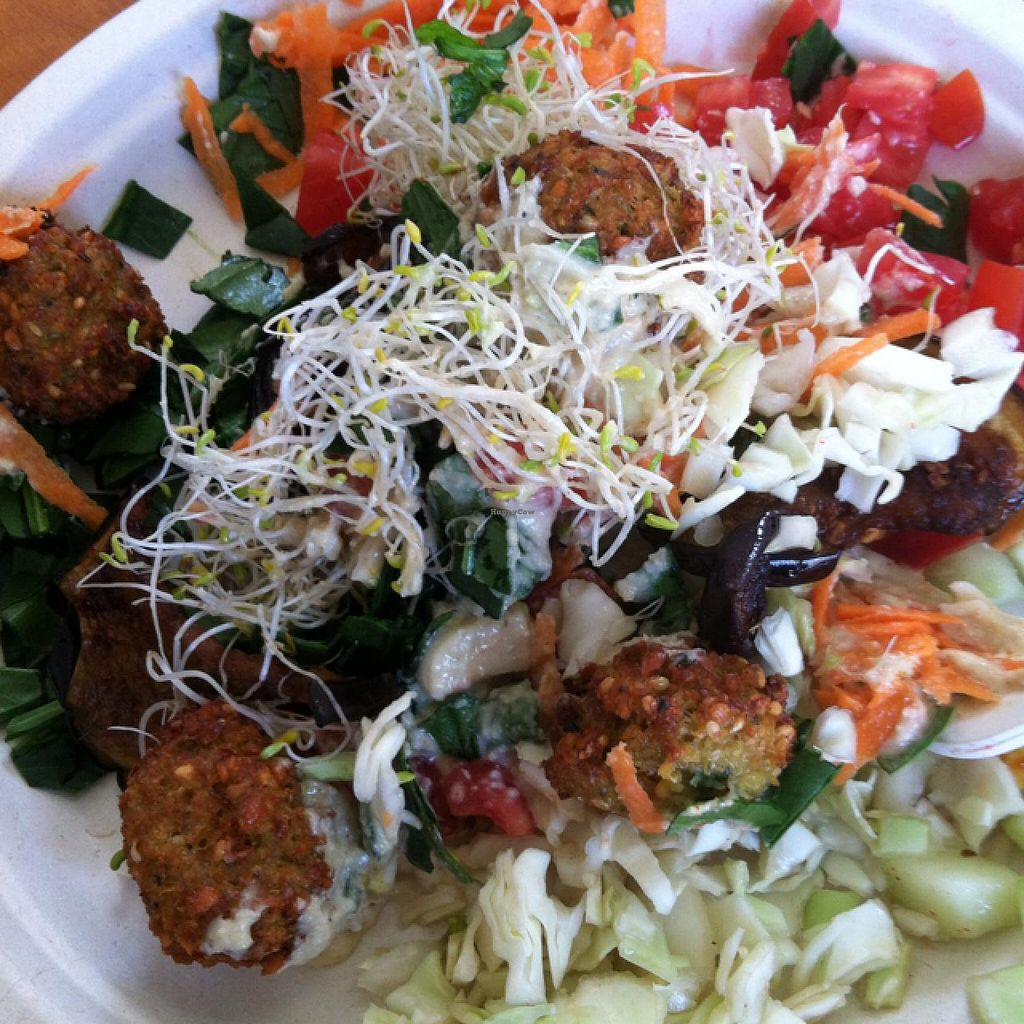 """Photo of Falafelito - Coyoacan  by <a href=""""/members/profile/veganvixenamy"""">veganvixenamy</a> <br/>falafel salad <br/> March 14, 2014  - <a href='/contact/abuse/image/39816/65911'>Report</a>"""