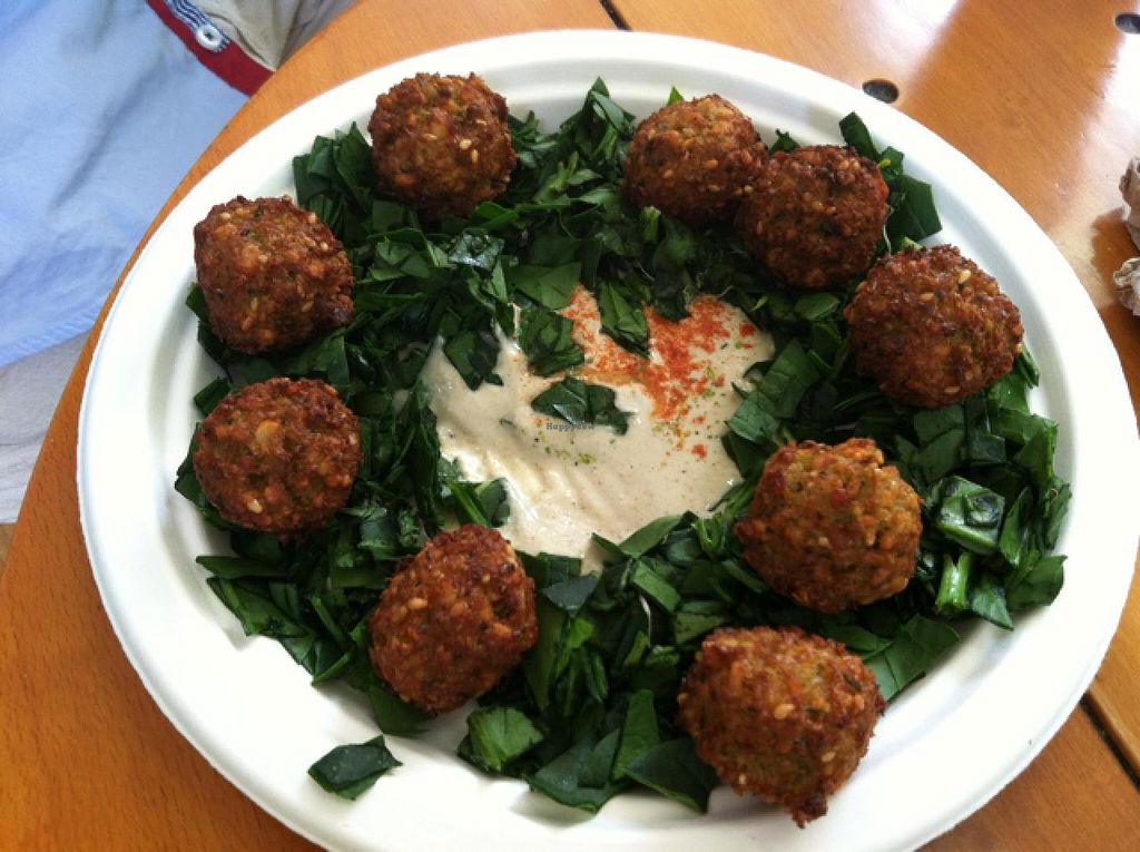 """Photo of Falafelito - Coyoacan  by <a href=""""/members/profile/veganvixenamy"""">veganvixenamy</a> <br/>falafel snack <br/> March 14, 2014  - <a href='/contact/abuse/image/39816/65912'>Report</a>"""