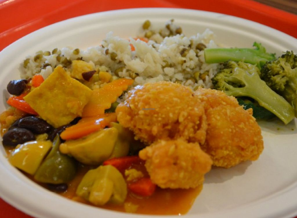 """Photo of Loving Hut - Radlicka  by <a href=""""/members/profile/citrameaune"""">citrameaune</a> <br/>Curry tofu, rice+mung, fried kauliflowers in clair, broccoli <br/> July 20, 2016  - <a href='/contact/abuse/image/39855/237544'>Report</a>"""