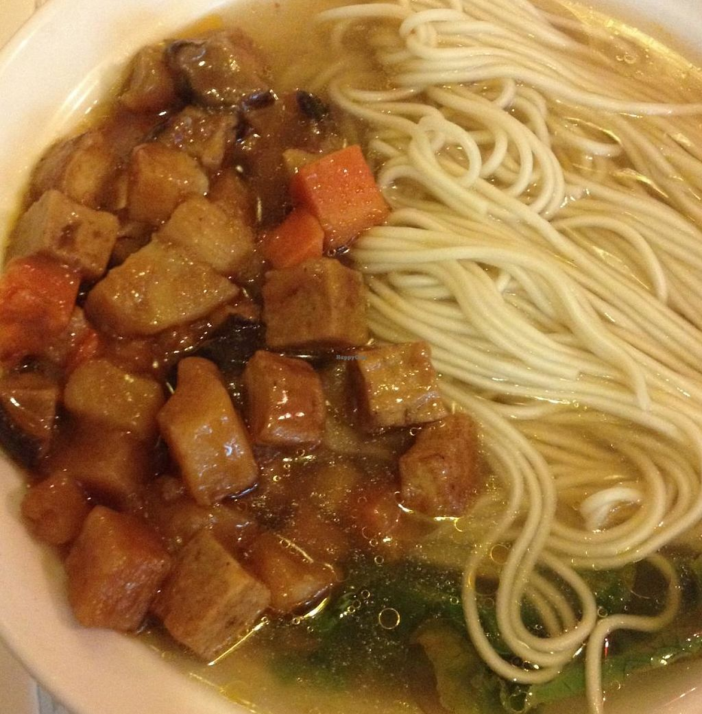"""Photo of Su Ren - Veg Inn  by <a href=""""/members/profile/SP"""">SP</a> <br/>Veg Inn - noodles <br/> June 23, 2015  - <a href='/contact/abuse/image/39886/265253'>Report</a>"""
