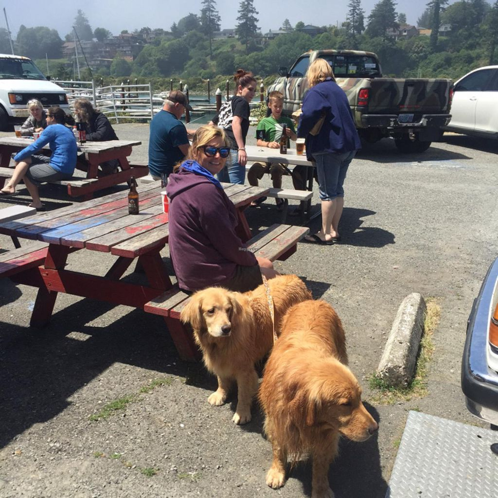 """Photo of Zola's Pizzeria  by <a href=""""/members/profile/GoldenPlant"""">GoldenPlant</a> <br/>beautiful outdoor seating along the Chetco River <br/> June 15, 2015  - <a href='/contact/abuse/image/39893/106061'>Report</a>"""