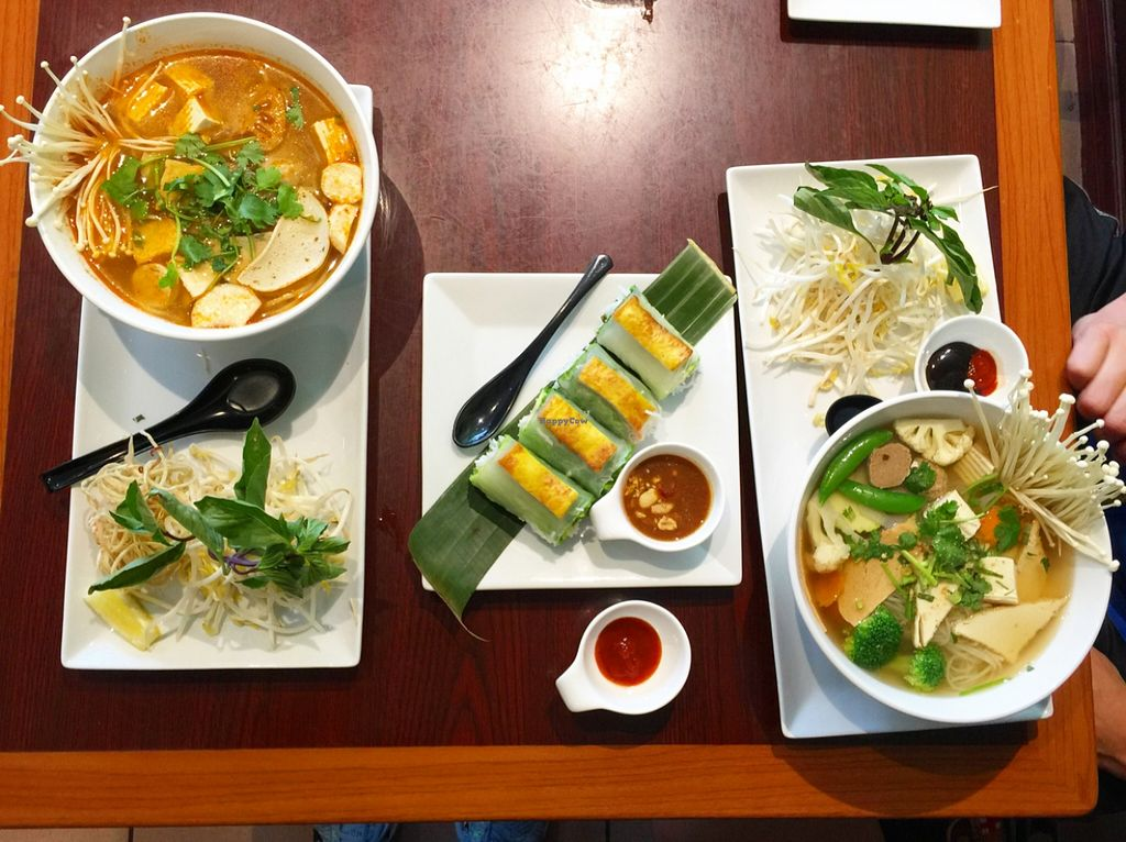 """Photo of Veggiebowl  by <a href=""""/members/profile/Veganyour.life"""">Veganyour.life</a> <br/>Vegetarian Bun Hue, Curry Tofu salad rolls and Pho <br/> May 15, 2016  - <a href='/contact/abuse/image/39931/149186'>Report</a>"""