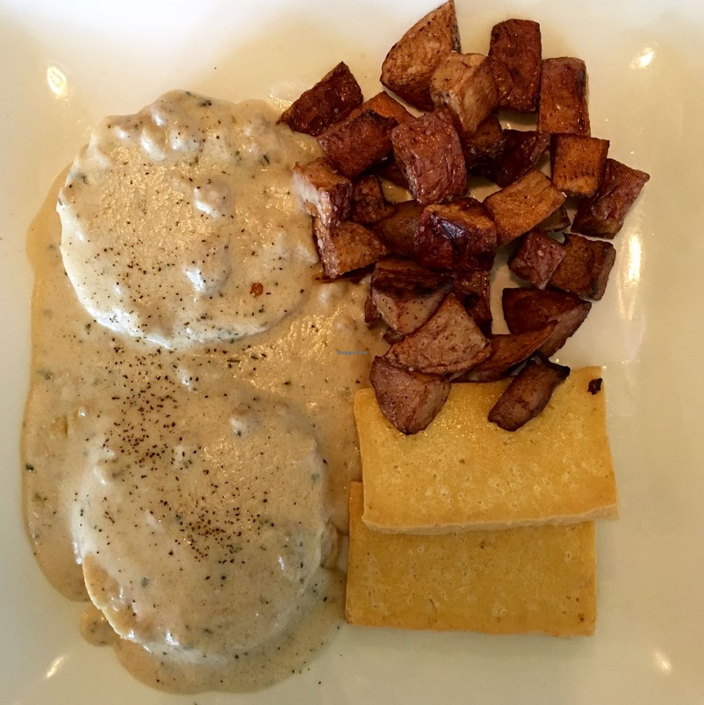 "Photo of Tree House  by <a href=""/members/profile/RikkiFox"">RikkiFox</a> <br/>Vegan biscuits and gravy. Unreal.  <br/> March 13, 2016  - <a href='/contact/abuse/image/39939/139838'>Report</a>"