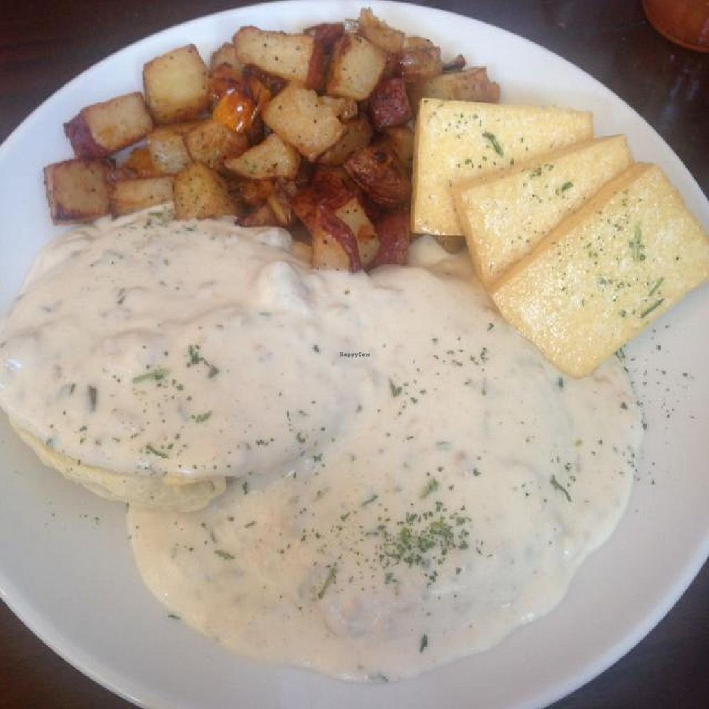 "Photo of Tree House  by <a href=""/members/profile/RH2309"">RH2309</a> <br/>Biscuits and gravy with eggs (tofu option) <br/> November 30, 2014  - <a href='/contact/abuse/image/39939/86765'>Report</a>"