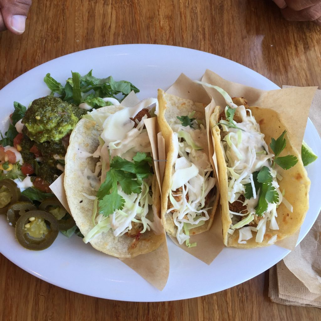 """Photo of CLOSED: The Veggie Grill - Irvine Crossroads  by <a href=""""/members/profile/amyrrobles"""">amyrrobles</a> <br/>'fish' tacos were great!! tasted just like fish (non-vegan approved too!!) but the bahn mi sandwich wasn't too good, I'd give it a thumbs down and wouldn't recommend <br/> February 9, 2016  - <a href='/contact/abuse/image/39940/135641'>Report</a>"""
