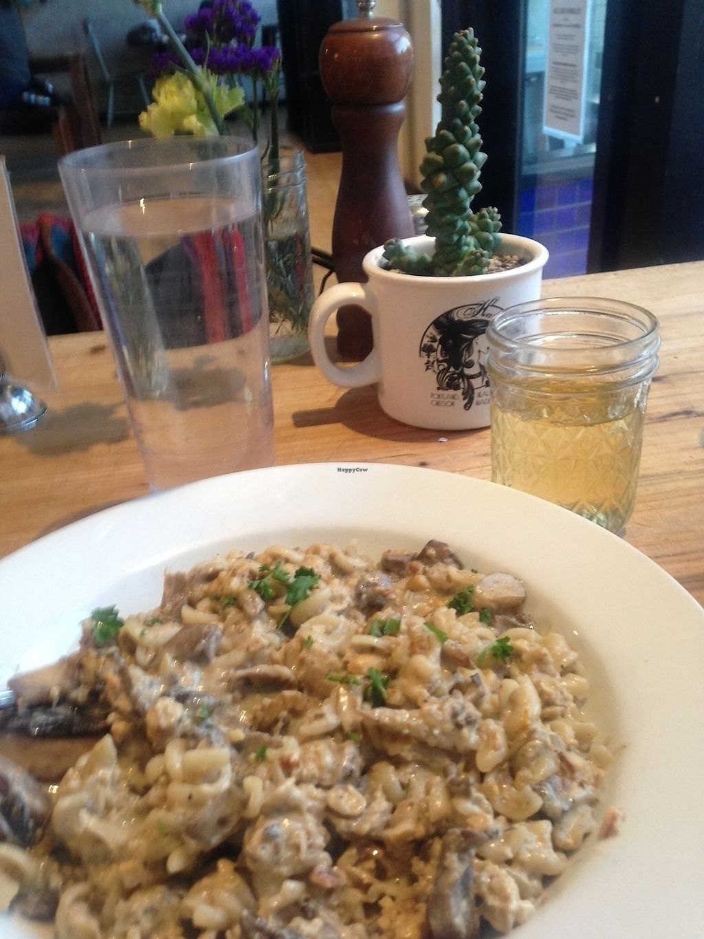 """Photo of Harlow  by <a href=""""/members/profile/Babbs1302"""">Babbs1302</a> <br/>Mushroom stroganoff: delicious and creamy <br/> February 14, 2018  - <a href='/contact/abuse/image/40043/359376'>Report</a>"""