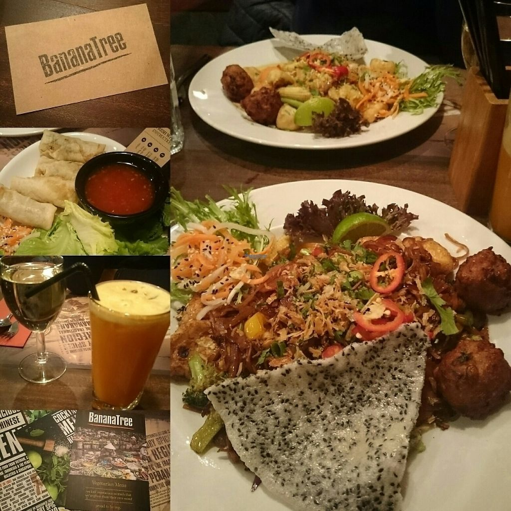 """Photo of Banana Tree  by <a href=""""/members/profile/Youyounicorn"""">Youyounicorn</a> <br/>tonight 's meal: vegan springrolls, vegan noodles and vegan fried rice <br/> February 20, 2017  - <a href='/contact/abuse/image/40094/228561'>Report</a>"""