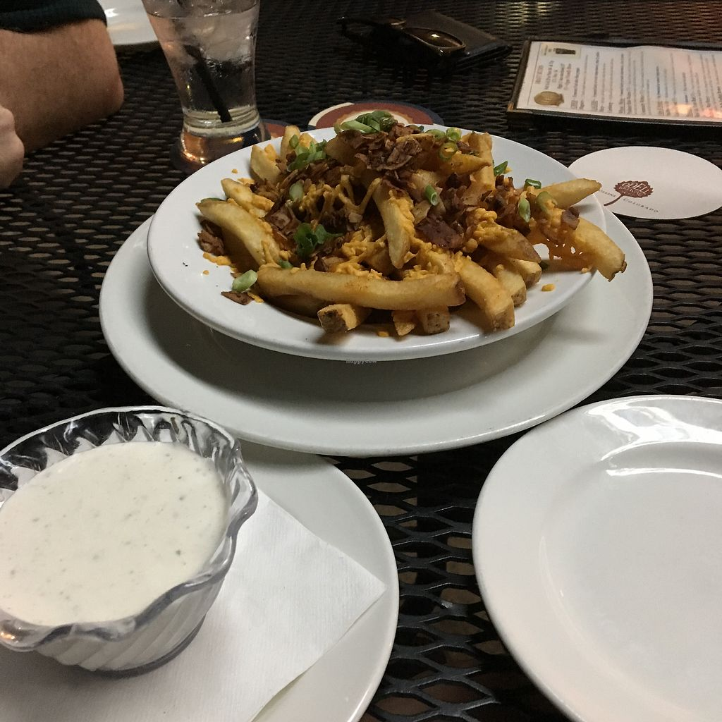 """Photo of Trinity Hall  by <a href=""""/members/profile/Dravarol"""">Dravarol</a> <br/>Vegan cheese fries with fake bacon and vegan ranch  <br/> June 22, 2017  - <a href='/contact/abuse/image/40151/272219'>Report</a>"""