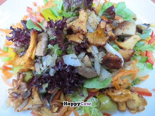 """Photo of Restaurant Café Kostbar  by <a href=""""/members/profile/VegiAnna"""">VegiAnna</a> <br/>Mixed salad with fried chanterelles <br/> July 31, 2013  - <a href='/contact/abuse/image/40162/52491'>Report</a>"""