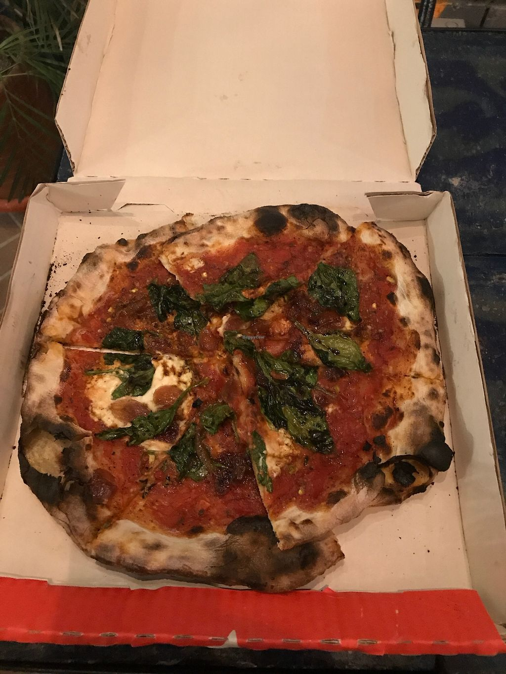 "Photo of Cafe Zorba  by <a href=""/members/profile/daydreamer4life"">daydreamer4life</a> <br/>Espinaca pizza with vegan cheese made from macademia <br/> February 5, 2018  - <a href='/contact/abuse/image/40226/355115'>Report</a>"