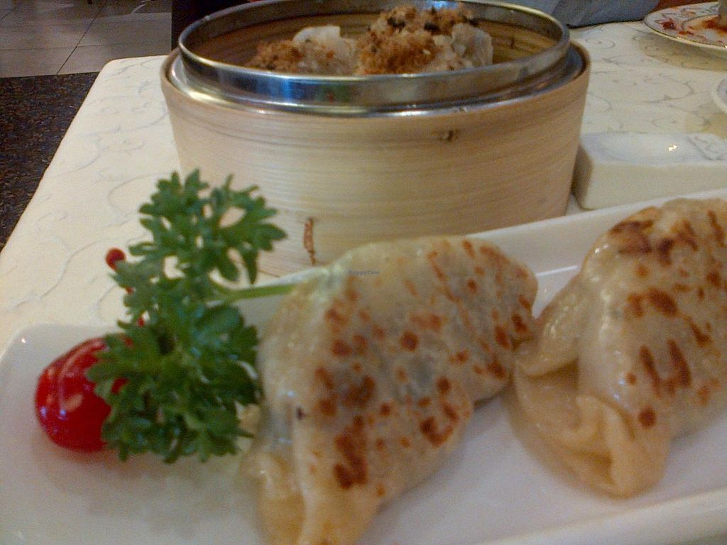 """Photo of Wutai Vegetarian Restaurant  by <a href=""""/members/profile/JK"""">JK</a> <br/>Dumplings <br/> September 14, 2014  - <a href='/contact/abuse/image/40238/79881'>Report</a>"""