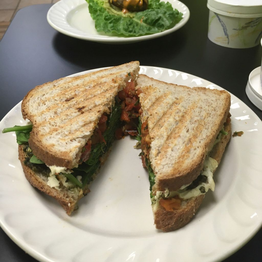 "Photo of Nectar Cafe  by <a href=""/members/profile/katierachel312"">katierachel312</a> <br/>pesto sandwich <br/> May 12, 2016  - <a href='/contact/abuse/image/40401/148678'>Report</a>"