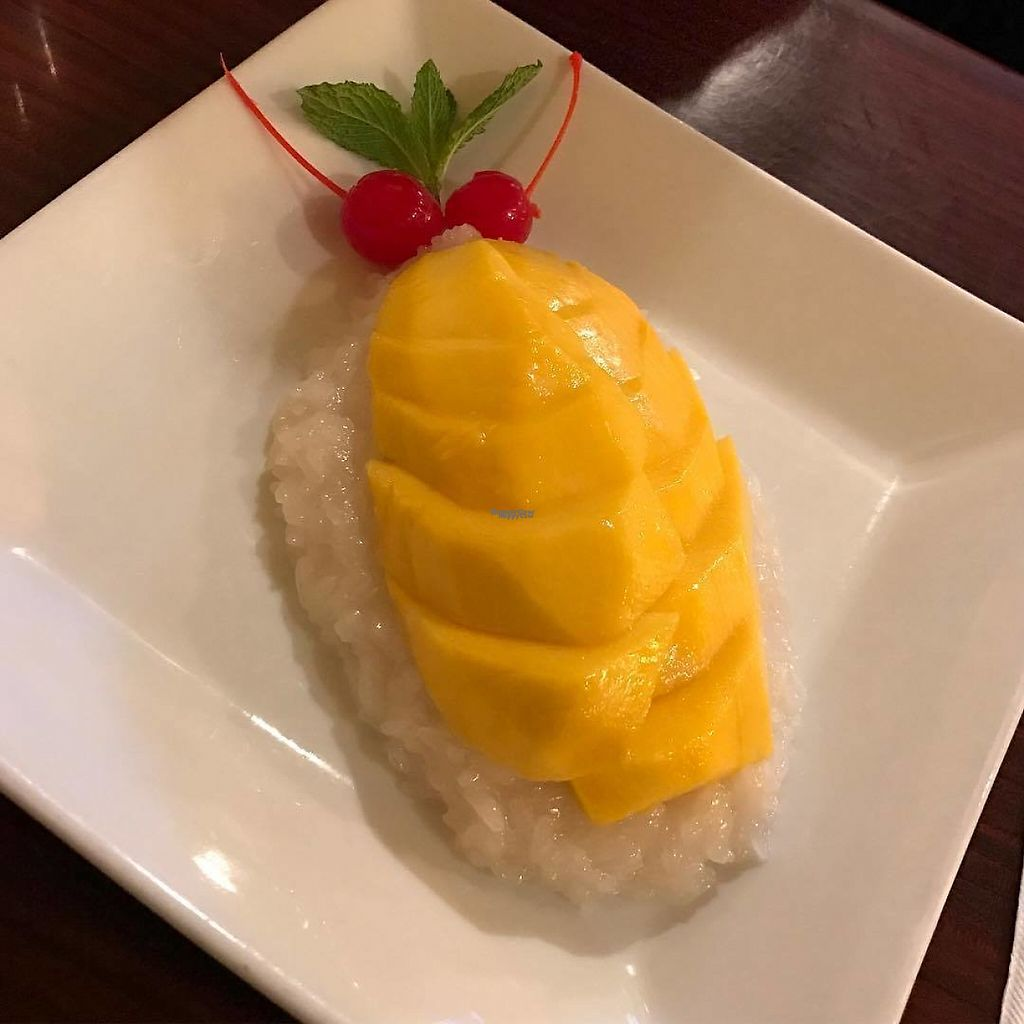 """Photo of Crystal's Kitchen  by <a href=""""/members/profile/stbenjam"""">stbenjam</a> <br/>BEST Mango Sticky Rice in New England! <br/> January 16, 2017  - <a href='/contact/abuse/image/40478/212550'>Report</a>"""
