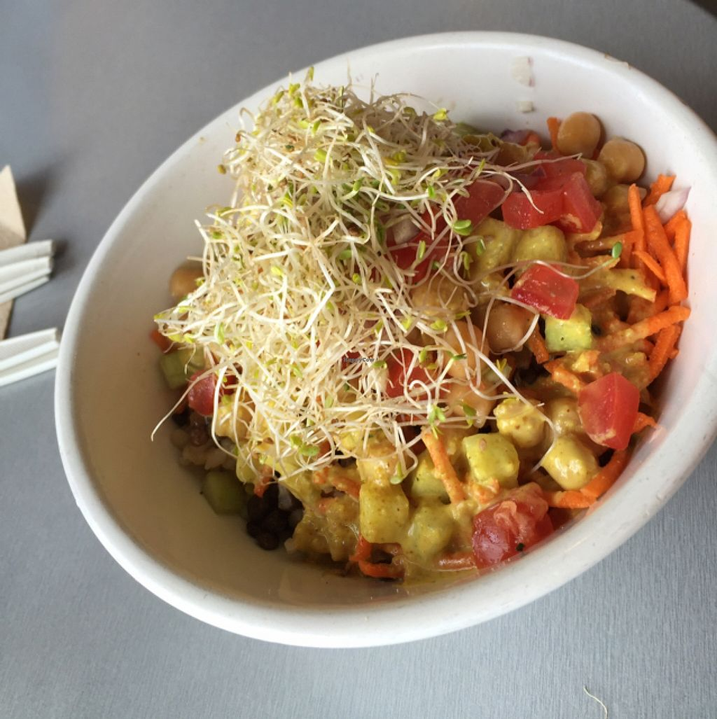 """Photo of Active Culture  by <a href=""""/members/profile/olivianmitchell"""">olivianmitchell</a> <br/>Lentil Goodness Bowl <br/> April 24, 2016  - <a href='/contact/abuse/image/40522/146013'>Report</a>"""