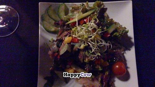 """Photo of CLOSED: Wondergood  by <a href=""""/members/profile/Poppycat"""">Poppycat</a> <br/>Mixed Salad <br/> November 9, 2013  - <a href='/contact/abuse/image/40561/58199'>Report</a>"""