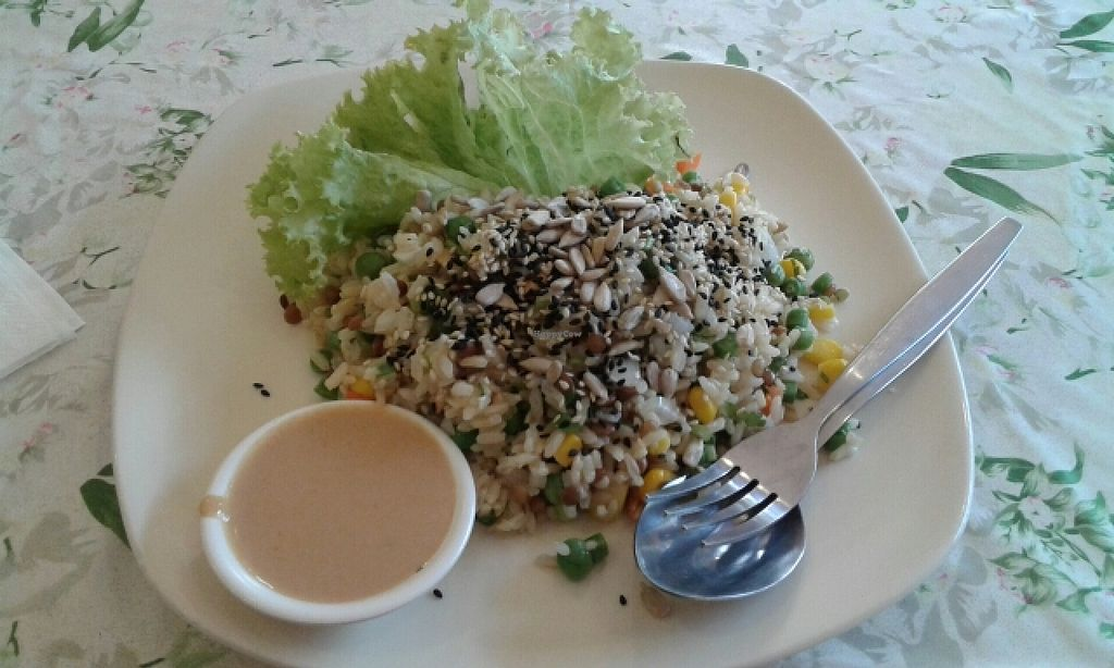 """Photo of Fuang Vegetarian  by <a href=""""/members/profile/SloanDayOff"""">SloanDayOff</a> <br/>Brown Rice healty salad :) scopo good!! <br/> February 19, 2016  - <a href='/contact/abuse/image/40611/136866'>Report</a>"""