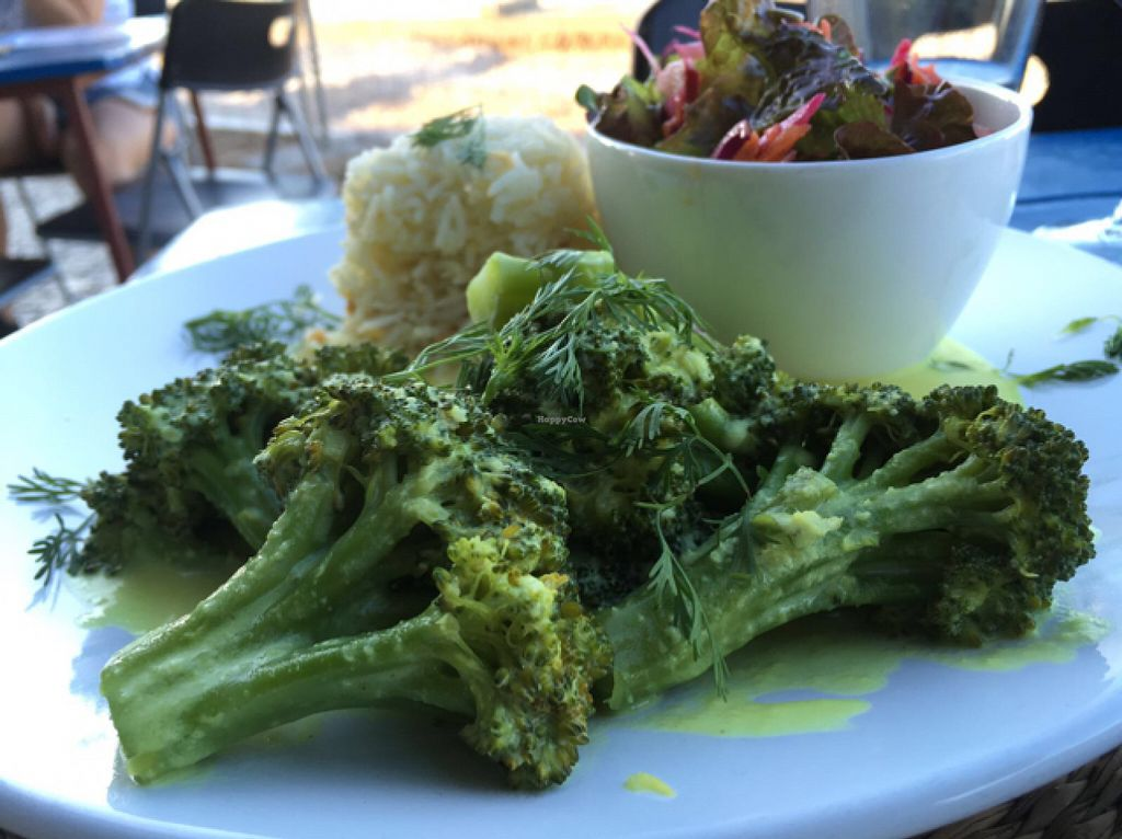 "Photo of Bistro 'O Porto  by <a href=""/members/profile/Assepoes"">Assepoes</a> <br/>Broccoli, Rice and a green salat <br/> June 2, 2016  - <a href='/contact/abuse/image/40673/151954'>Report</a>"