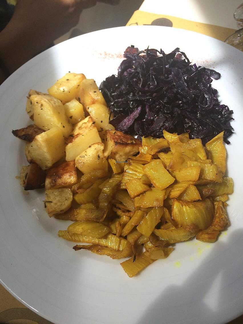 "Photo of Ratatouille  by <a href=""/members/profile/tendaystogo"">tendaystogo</a> <br/>potatoes, fennel and red cabbage <br/> September 11, 2017  - <a href='/contact/abuse/image/40707/303287'>Report</a>"