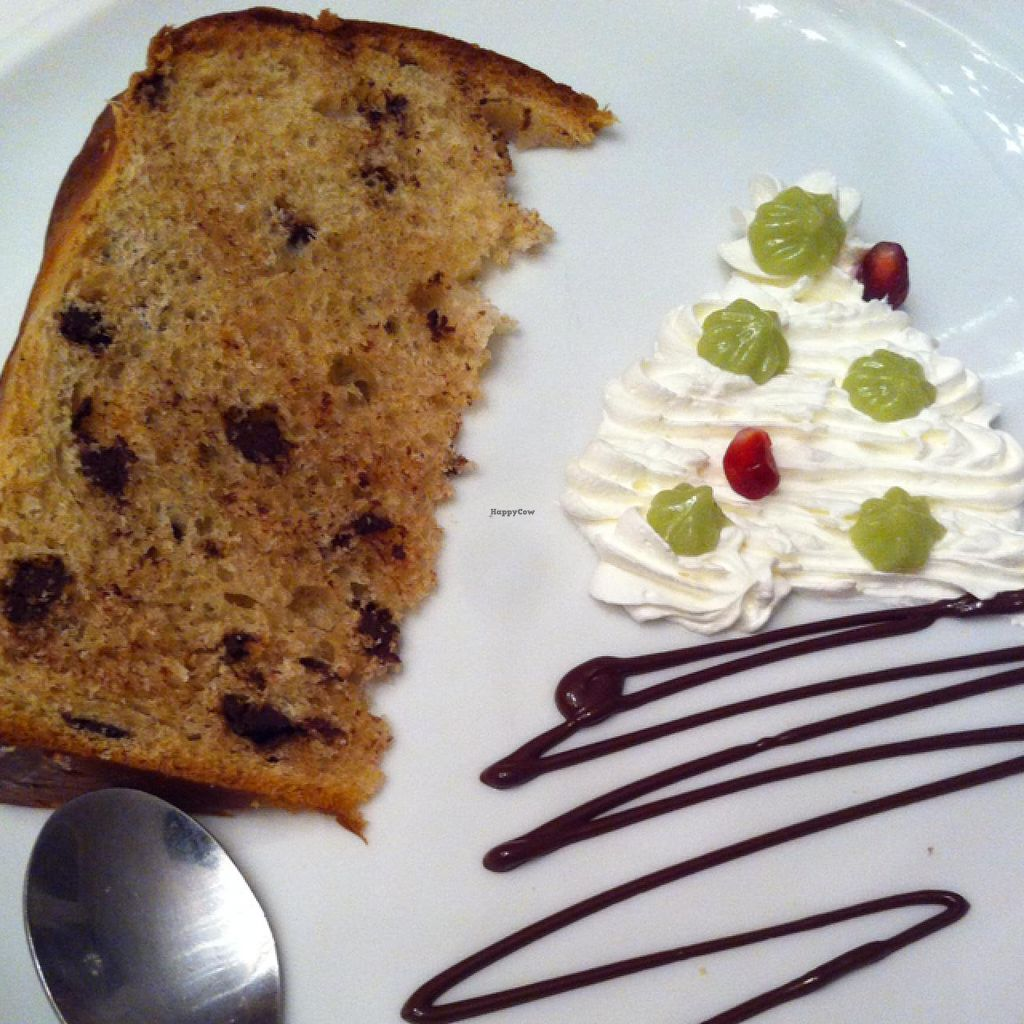 "Photo of Ratatouille  by <a href=""/members/profile/hokusai77"">hokusai77</a> <br/>vegan panettone with chocolate chips <br/> January 6, 2015  - <a href='/contact/abuse/image/40707/89621'>Report</a>"