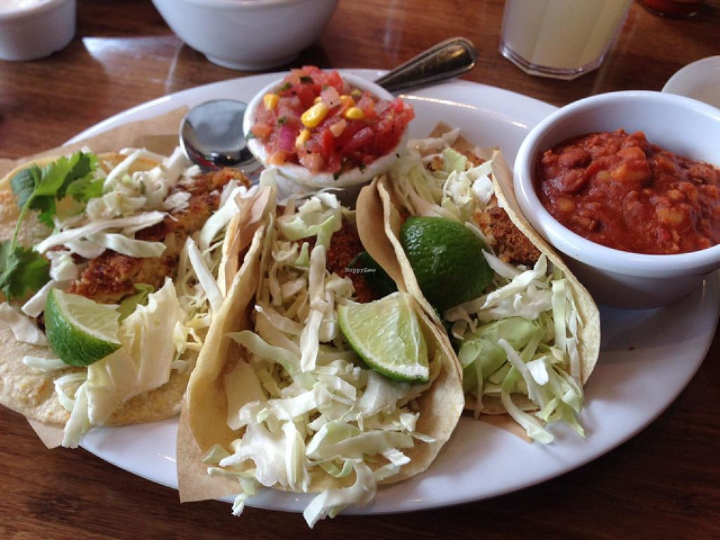 Photo of Veggie Grill  by claya <br/>fish tacos  <br/> February 6, 2014  - <a href='/contact/abuse/image/40894/63837'>Report</a>
