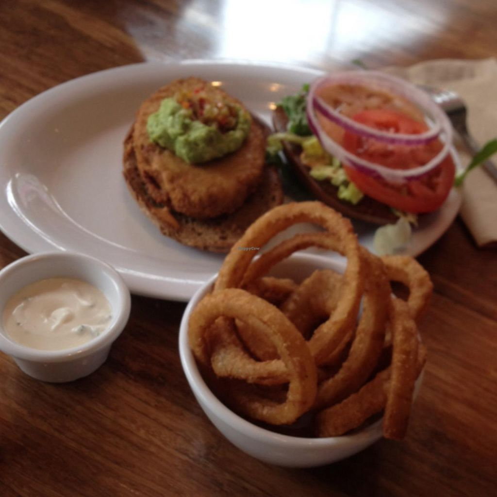 Photo of Veggie Grill  by claya <br/>onion rings..chicken sandwich  <br/> February 6, 2014  - <a href='/contact/abuse/image/40894/63838'>Report</a>